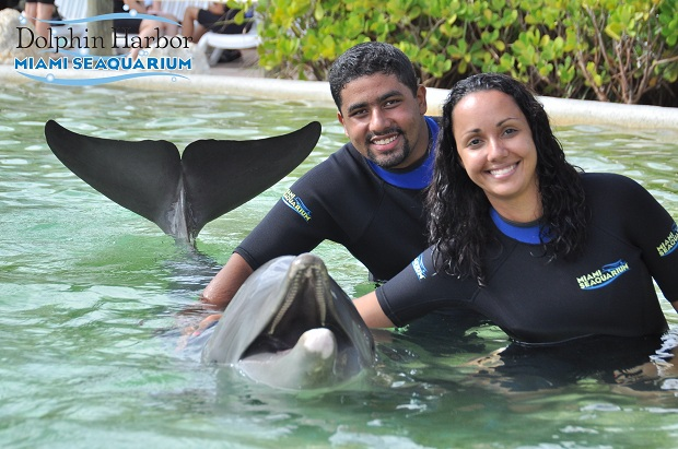 Abraçando o golfinho - Miami Seaquarium