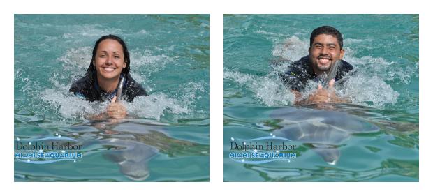 Nadando com os golfinhos - Miami Seaquarium