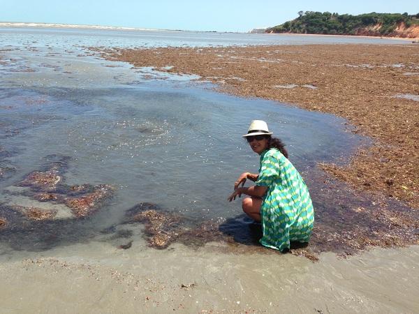 Fonte de água doce em meio a maré baixa