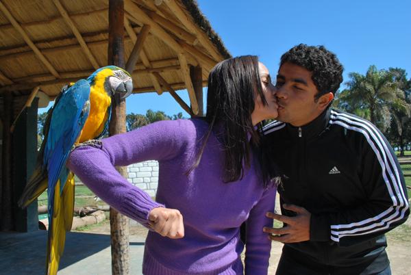 Arara testemunha =) Zoo Lujan - Argentina, 2010