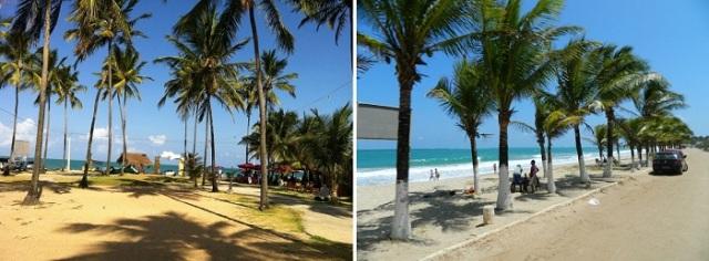 Praia de Maracaípe - Porto de Galinhas