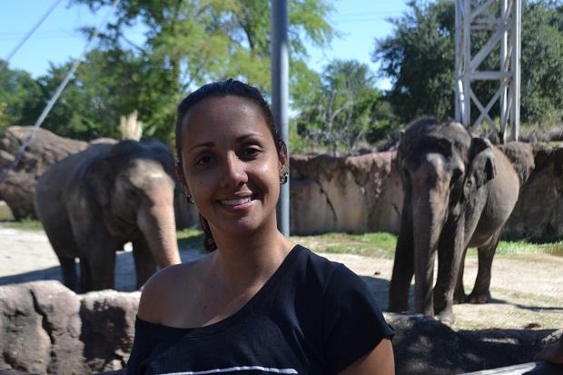 Aline e os elefantes