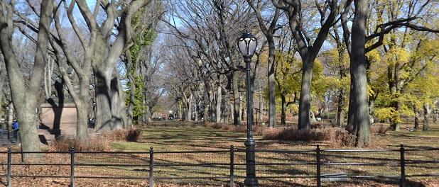 central park o tour nosso de cada dia