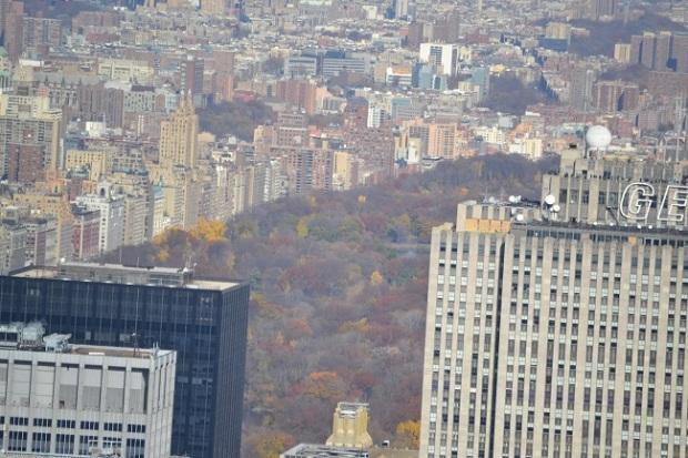 Só pra dar a noção: o parque visto do Empire State