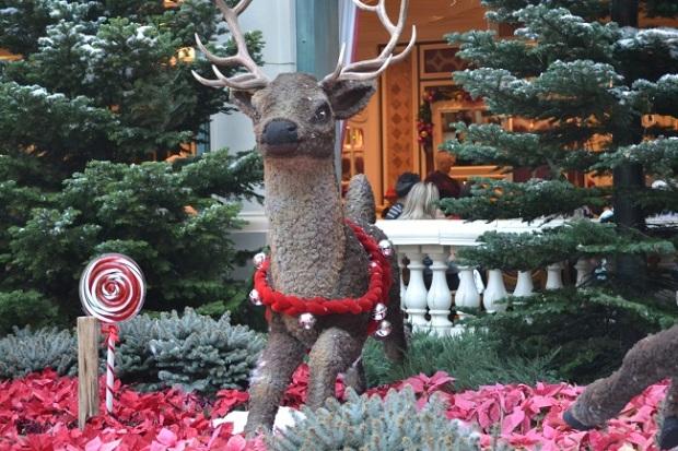Decoração varia durante o ano; esta é a de Natal