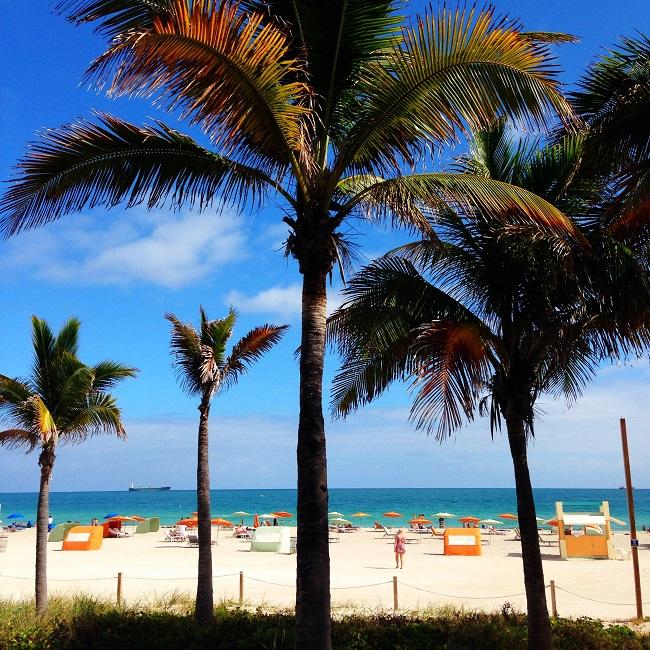 Miami Beach: sinônimo de sol, praia e festa!