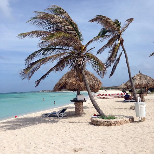 dicas arashi beach aruba