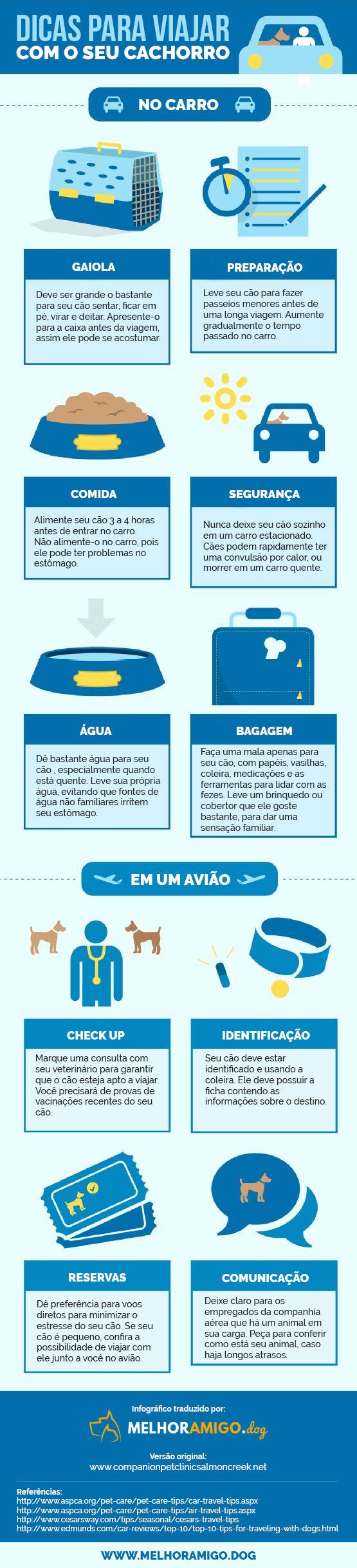 viajar-com-cachorro-dicas (1)
