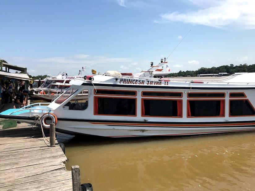 iguana turismo
