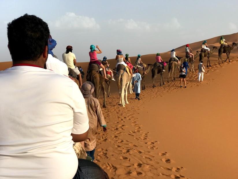 andar camelo deserto